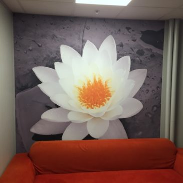 A Basic Guide to Interior Wall Graphics